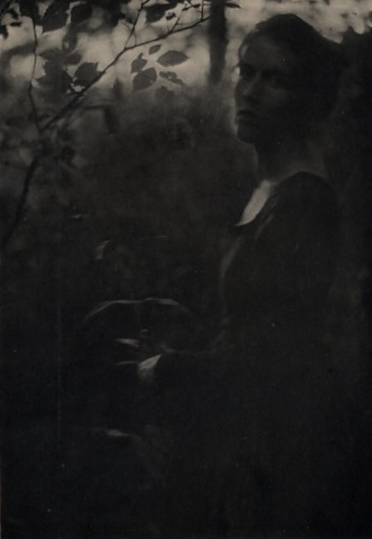 EDGE OF THE WOODS - EVENING. Clarence H. White.